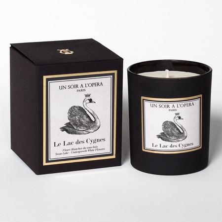 candle-swan-lake